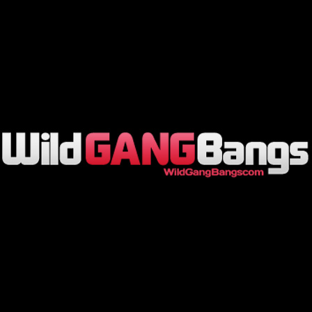 Wild Gangbangs Channel